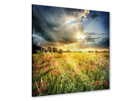 Acrylglasbild Die Blumenlandschaft