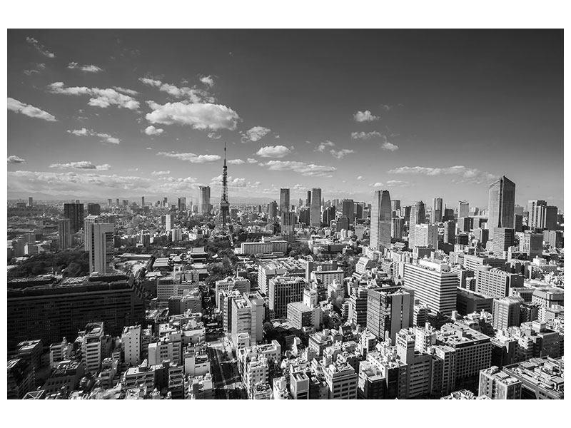 Acrylglasbild Tokio