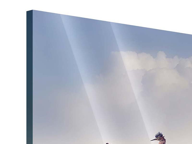 Acrylglasbild Arche Noah