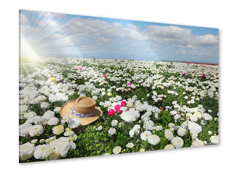 Acrylglasbild Die Frühlingsblumenwiese