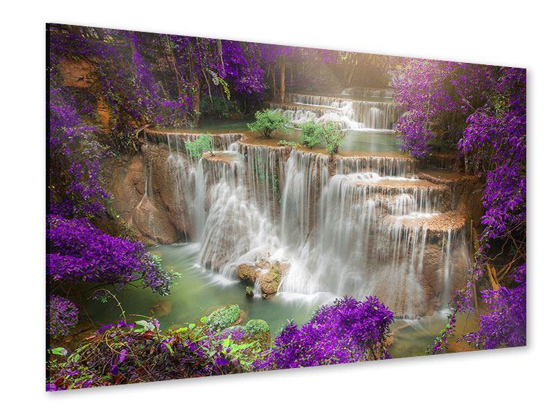 Acrylglasbild Garten Eden
