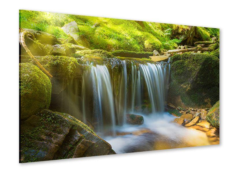 Acrylglasbild Schönheit des fallenden Wassers