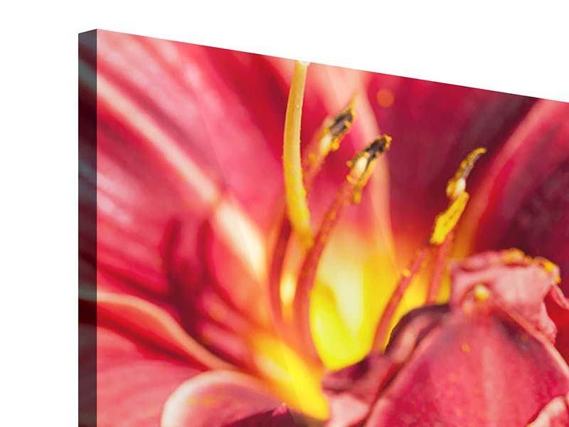 Acrylglasbild Rotes Lilienduo