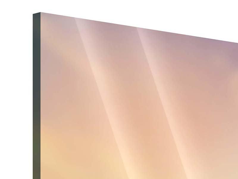 Acrylglasbild Romantische Flamingos