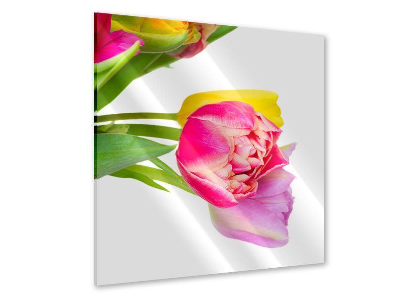 Acrylglasbild Ein bunter Tulpenstrauss