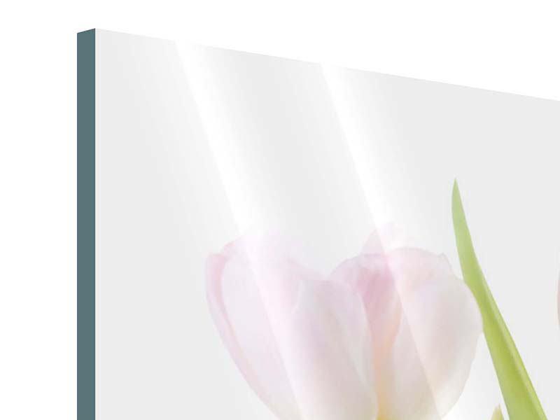 Acrylglasbild Das Tulpentrio