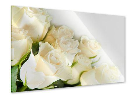Acrylglasbild Weisse Rosen