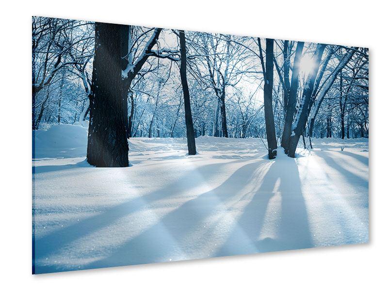 Acrylglasbild Der Wald ohne Spuren im Schnee