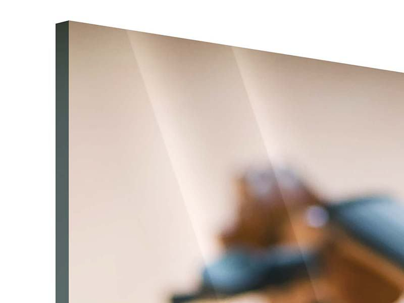 Acrylglasbild Geige