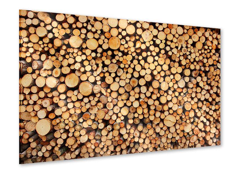Acrylglasbild Holzstämme