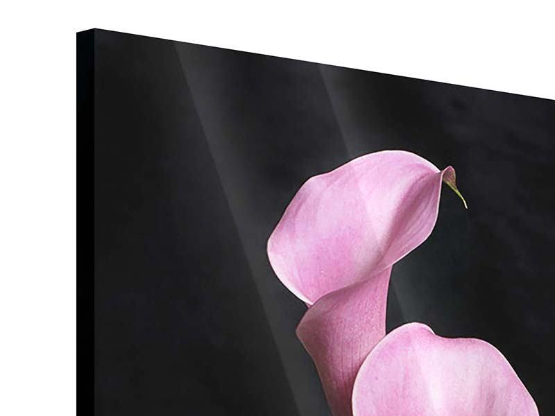 Acrylglasbild 3 Lila-Callas