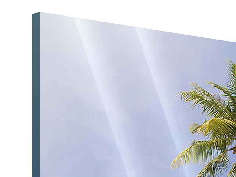 Acrylglasbild Dschungelbeat