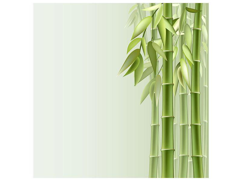 Acrylglasbild Bambuswall