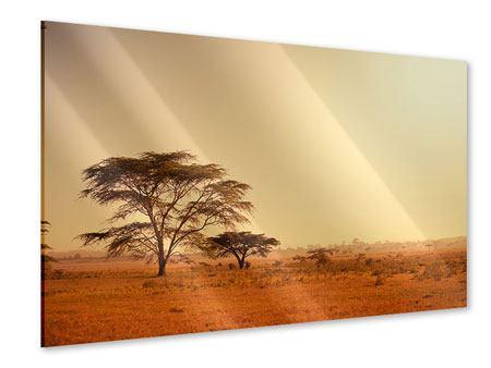 Acrylglasbild Weideland in Kenia