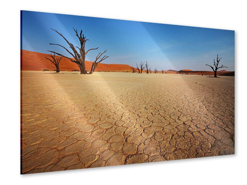 Acrylglasbild Wüste