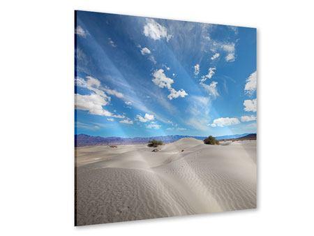 Acrylglasbild Wüstenlandschaft