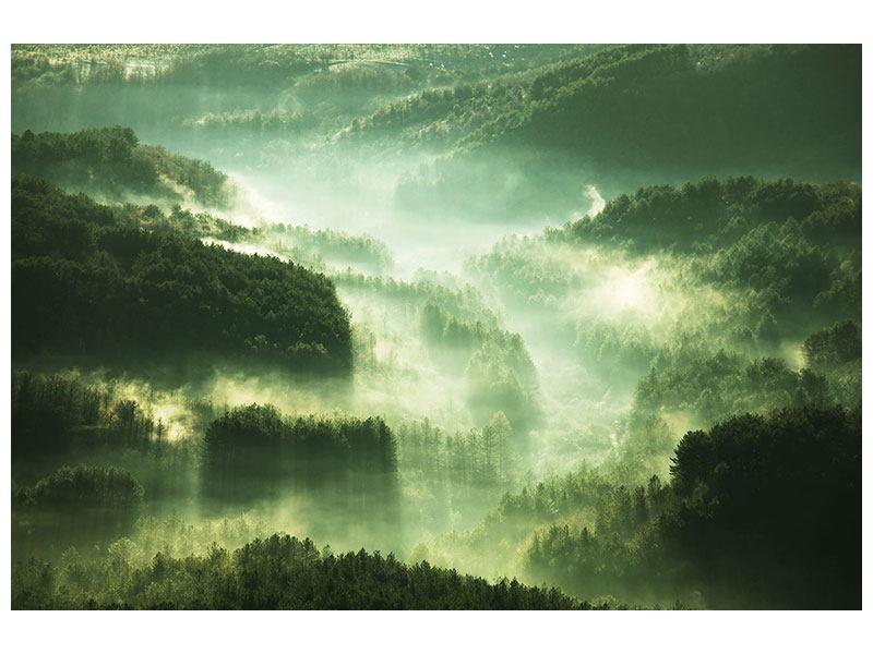 Acrylglasbild Über den Wäldern