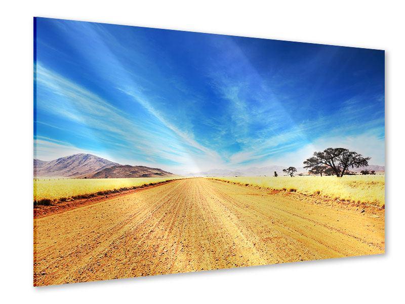 Acrylglasbild Eine Landschaft in Afrika