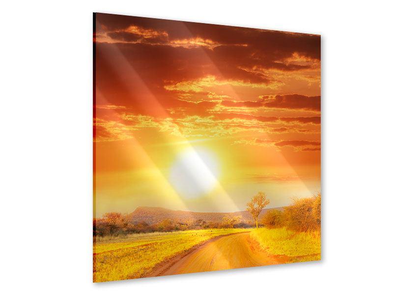 Acrylglasbild Sonnenuntergang in der Savanne