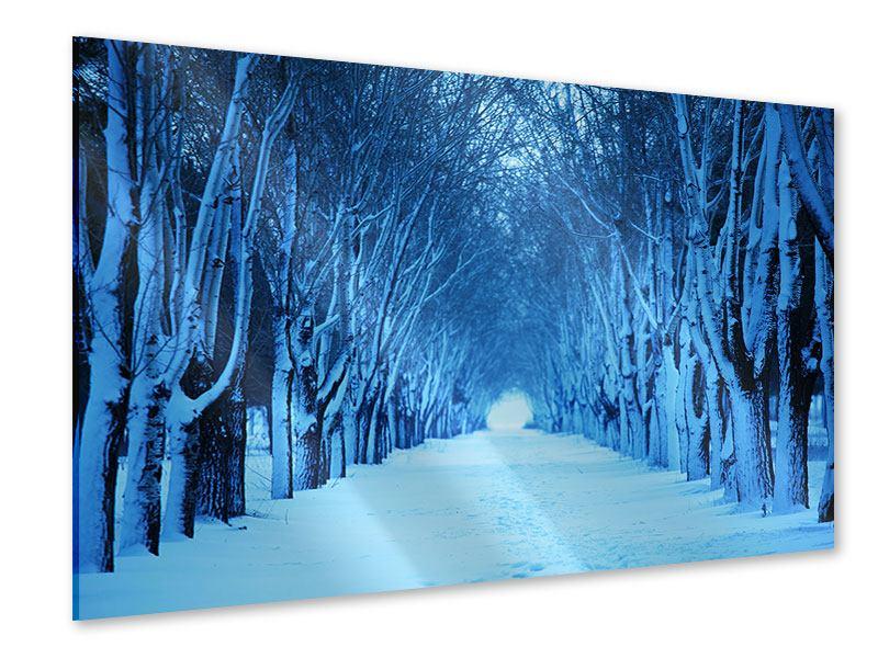 Acrylglasbild Winterbäume