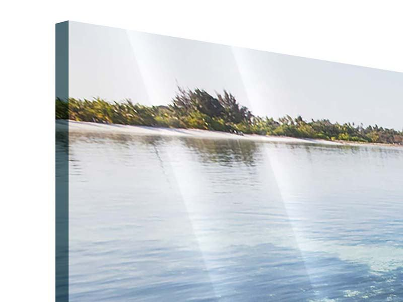 Acrylglasbild Bad im Meer