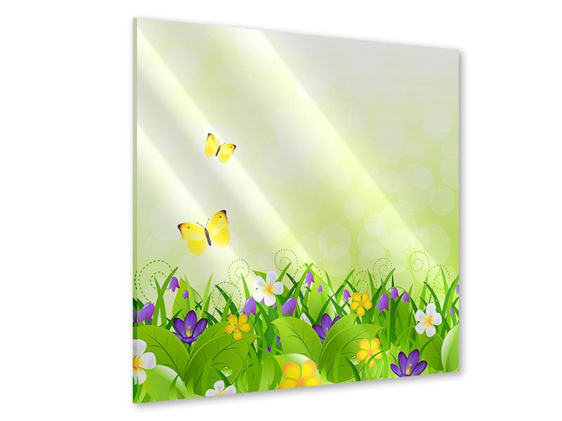 Acrylglasbild Lustige Schmetterlinge