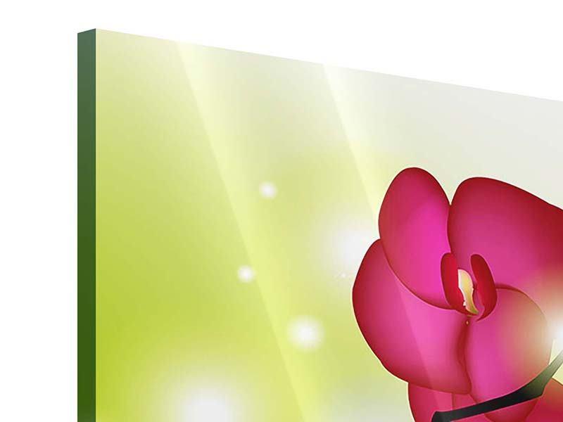 Acrylglasbild Heiligtum der Orchidee