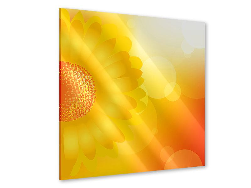 Acrylglasbild Sunflower Power