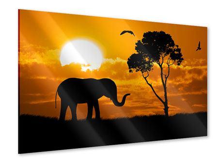 Acrylglasbild Verträumtes Afrika