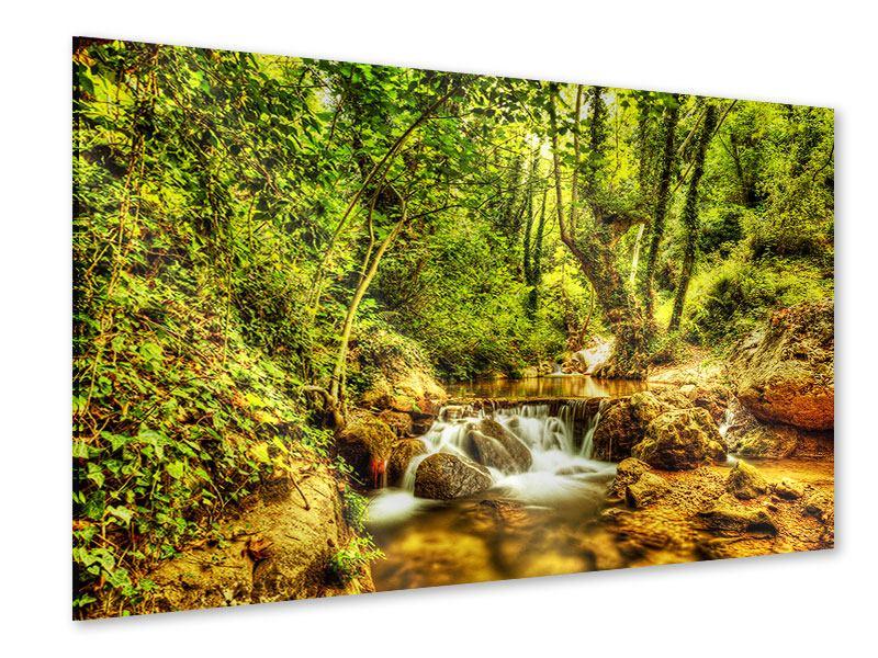 Acrylglasbild Wasserfall im Wald