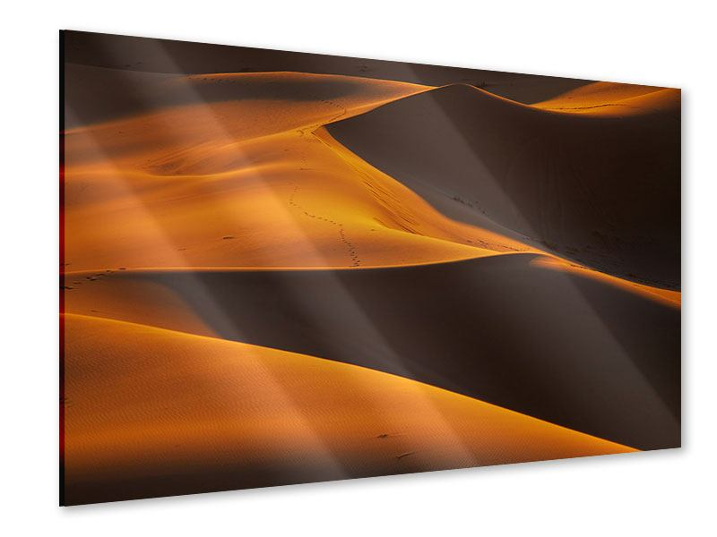 Acrylglasbild Wüstensand