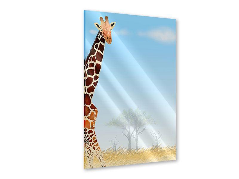 Acrylglasbild Giraffenfreund