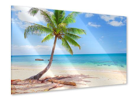 Acrylglasbild Die eigene Insel
