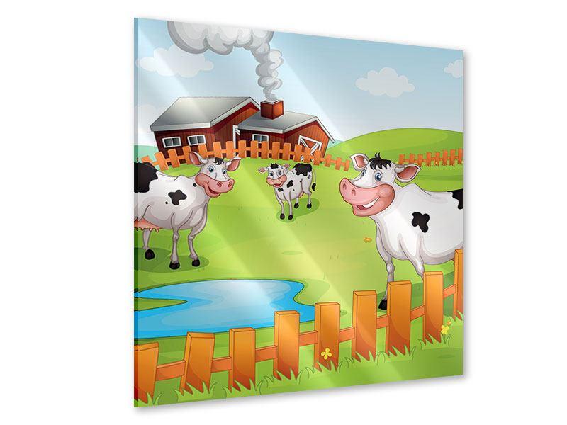 Acrylglasbild Die lustigen Kühe