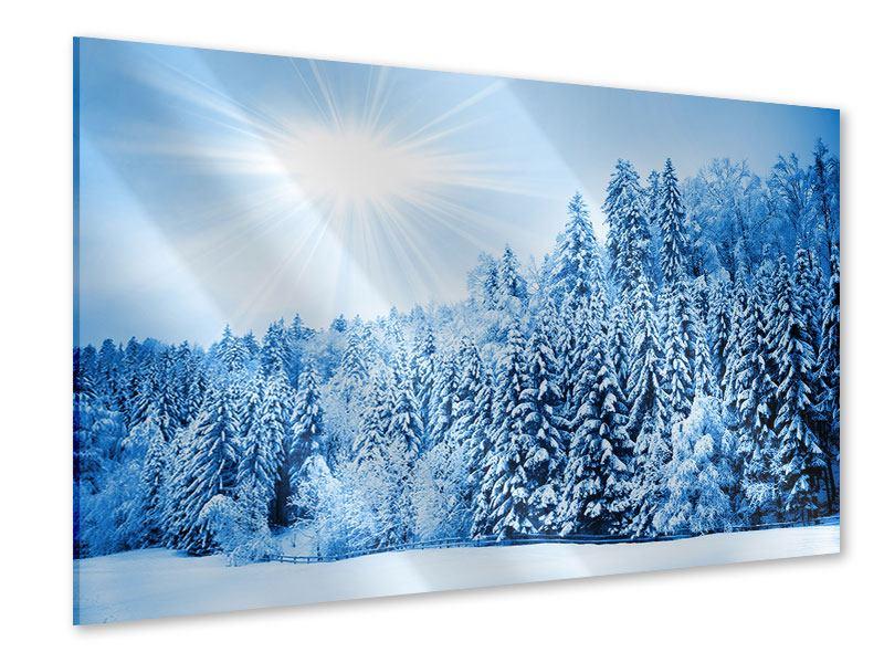 Acrylglasbild Wintermärchen