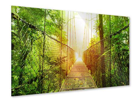 Acrylglasbild Hängebrücke