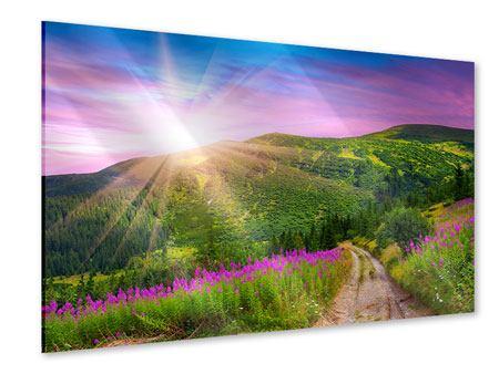 Acrylglasbild Eine Sommerlandschaft bei Sonnenaufgang