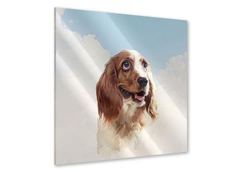 Acrylglasbild Fröhlicher Hund