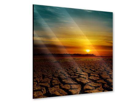 Acrylglasbild Afrikas Dürre
