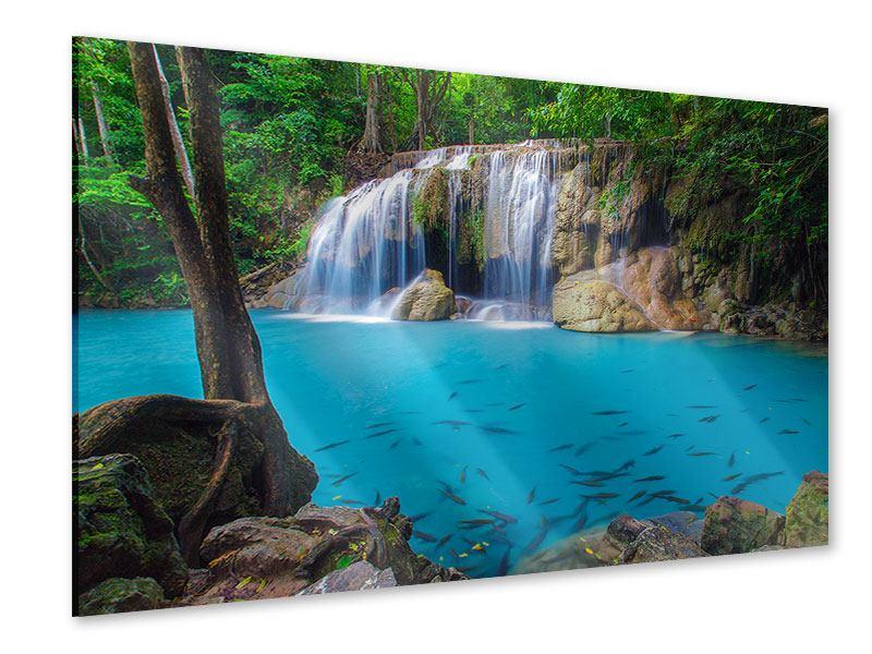 Acrylglasbild Naturerlebnis Wasserfall