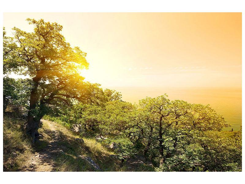 Acrylglasbild Sonnenuntergang in der Natur