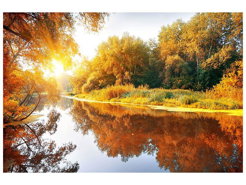 Acrylglasbild Waldspiegelung im Wasser