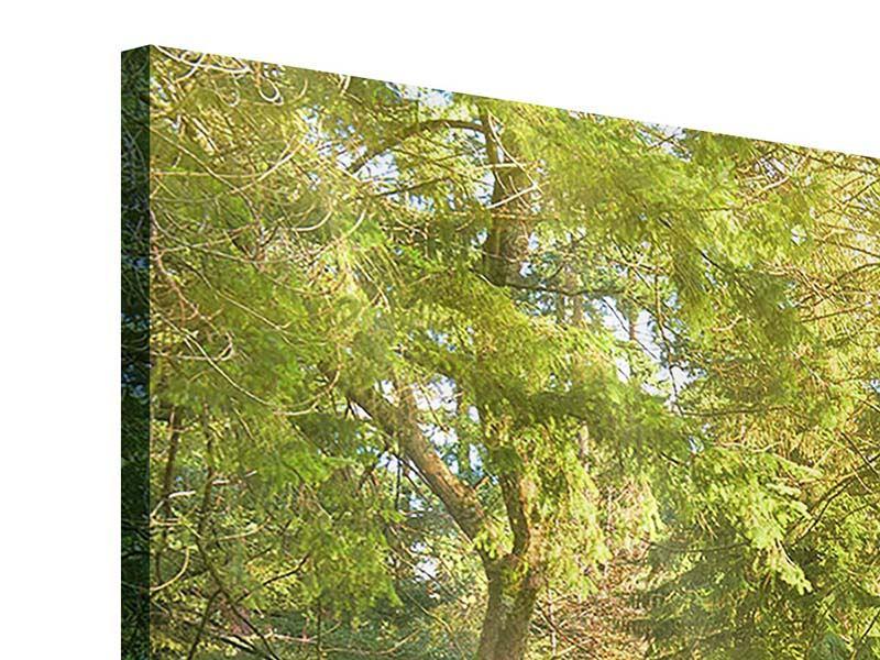 Acrylglasbild Im Park