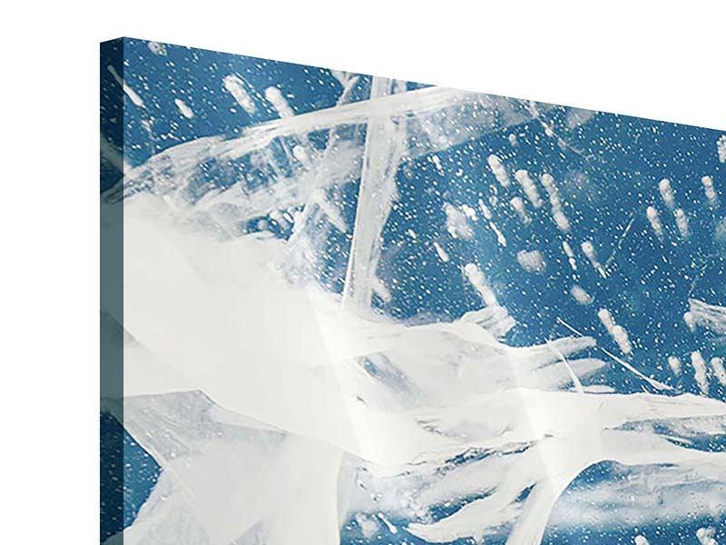 Acrylglasbild Eiskristalle