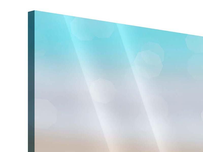 Acrylglasbild Die Muschel am Strand