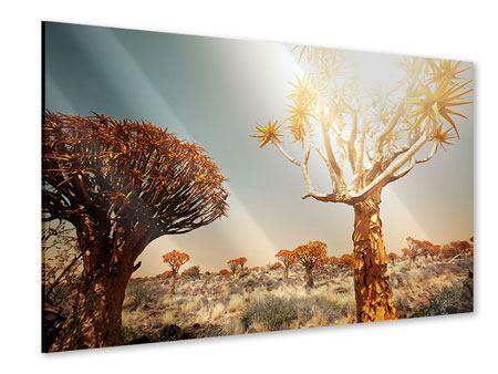 Acrylglasbild Afrikanische Landschaft