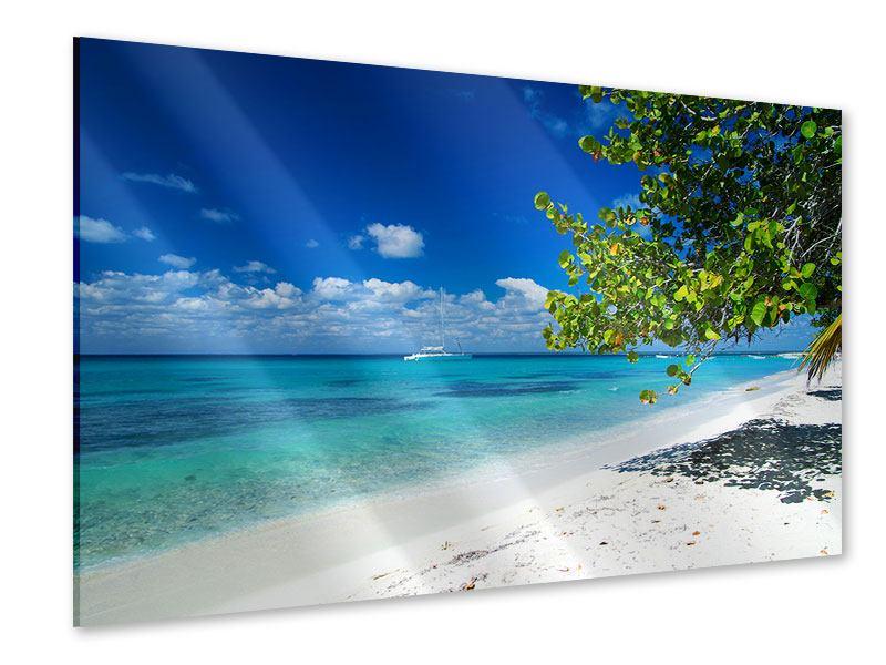Acrylglasbild Happy Beach