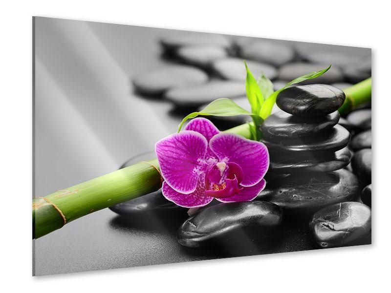 Acrylglasbild Feng-Shui-Orchidee