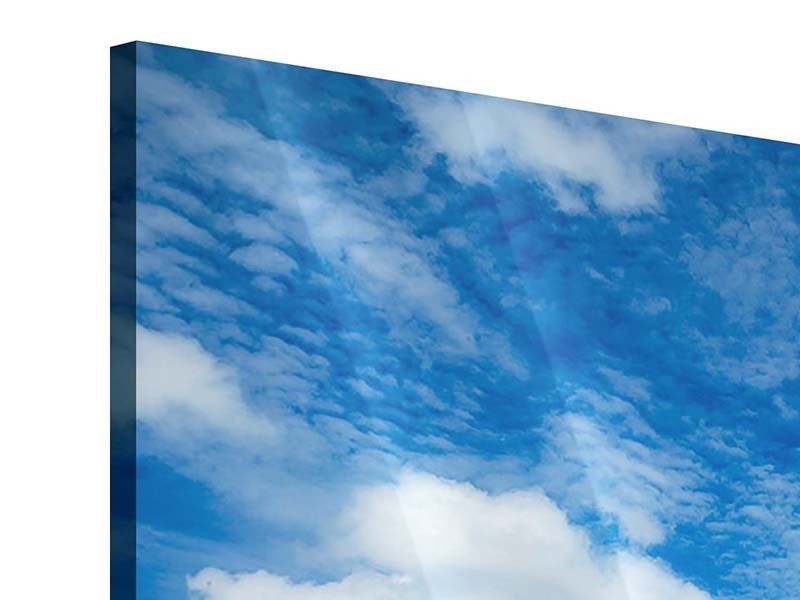 Acrylglasbild Hoch über den Wolken