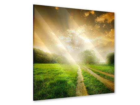 Acrylglasbild Mystischer Sonnenuntergang